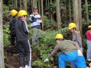 林業体験教室