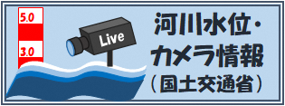 River water level and live camera picture